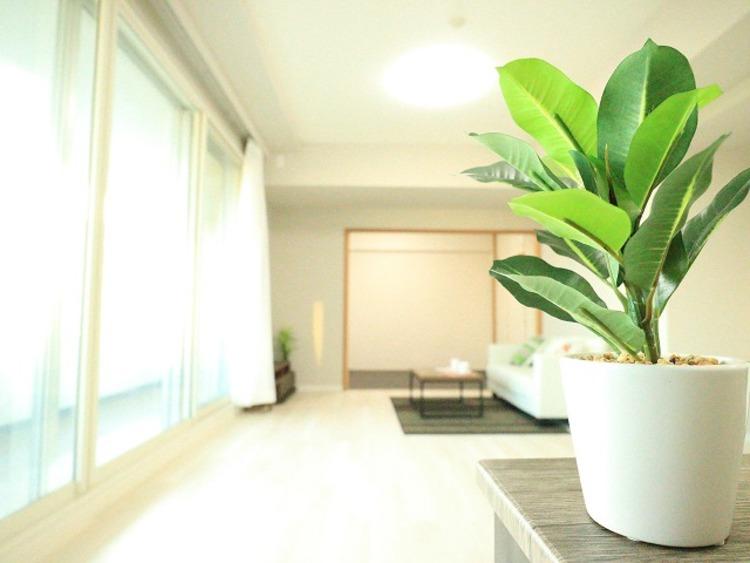 4LDK×リノベ■クレッセント武蔵小杉GRANDAYS参番館【renovation】の物件画像