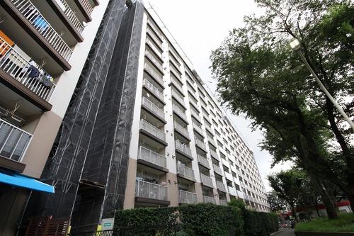 狛江ハイタウン1号棟(1012)の画像