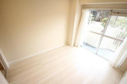 白鳥スカイマンション(2F)の画像