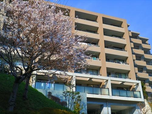 大切なペットと暮らせる♪「横浜三ッ池公園パーク・ホームズ」南西角部屋【reform】の画像