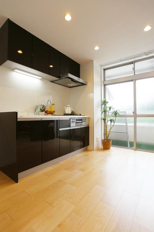田園キャッスル横浜西口(113)のキッチン画像