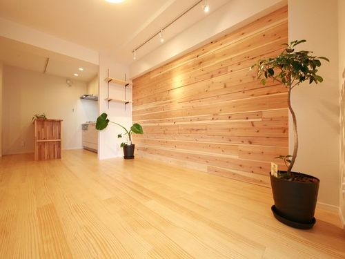 【柿の木坂サニーハイツ】植物に囲まれてシックに暮らすの画像