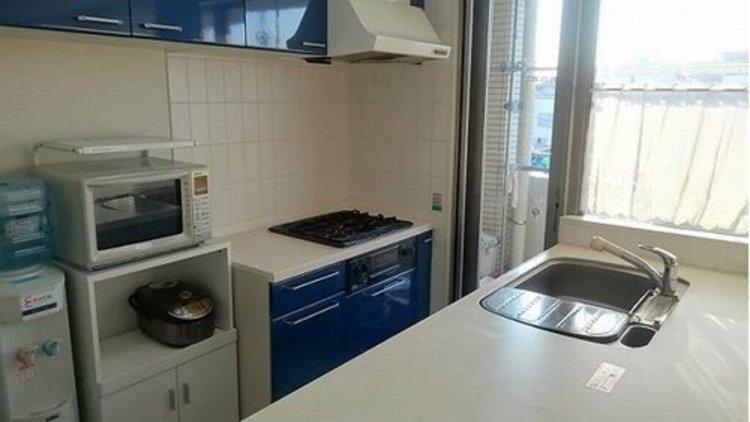 大切なペットと暮らせるマンション『ランドステージヒルズ南馬込』のキッチン画像