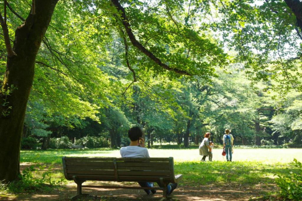 駒場公園まで1210m 緑あふれる公園で休日をゆっくり過ごすことも