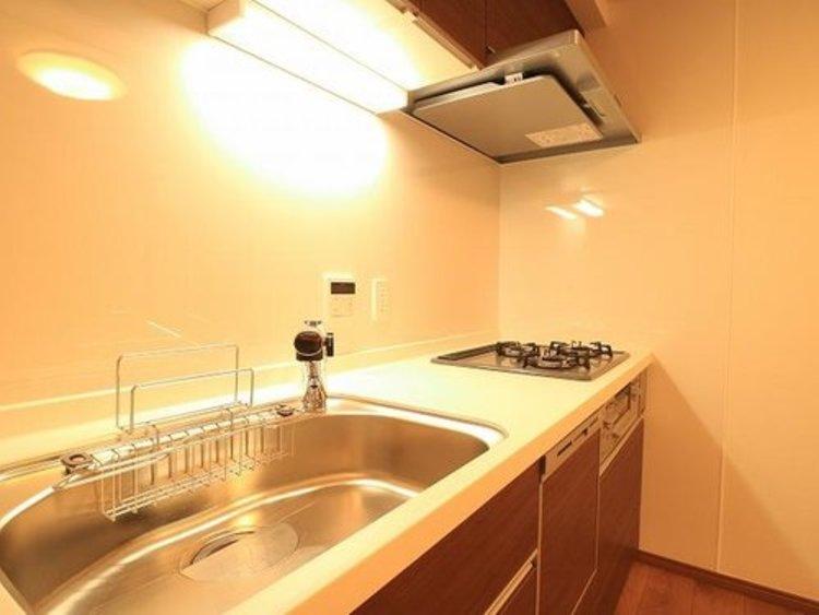 エキチカ!池上駅徒歩1分!『ルピナス池上』フルリノベーションされたお部屋のキッチン画像
