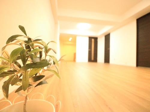 室内90㎡超のフルリノベHOUSE♪グリーンコーポ綱島【renovation】の画像